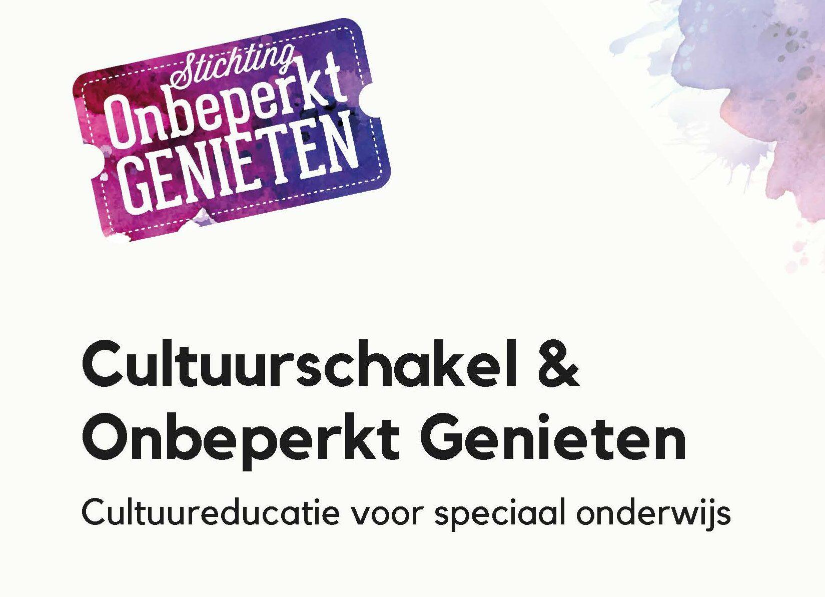 Voorpagina case Cultuurschakel en onbeperkt genieten over cultuureducatie voor speciaal onderwijs
